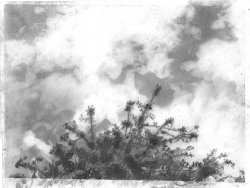 "graphite on vellum, 7.5x9.5"", 2010"